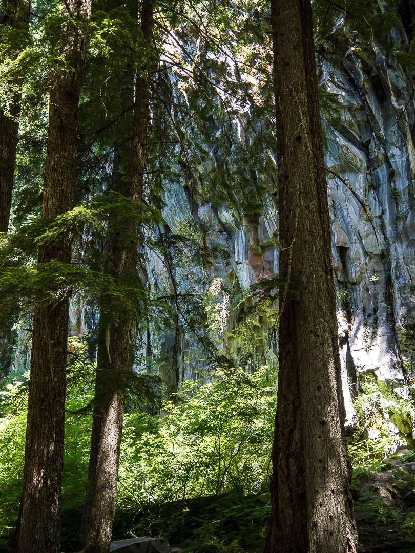 Ramona Falls Hike Mount Hood 07
