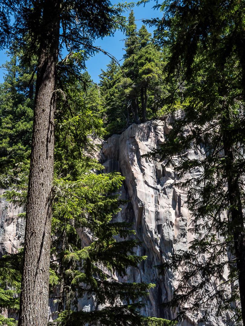 Ramona Falls Hike Mount Hood 08