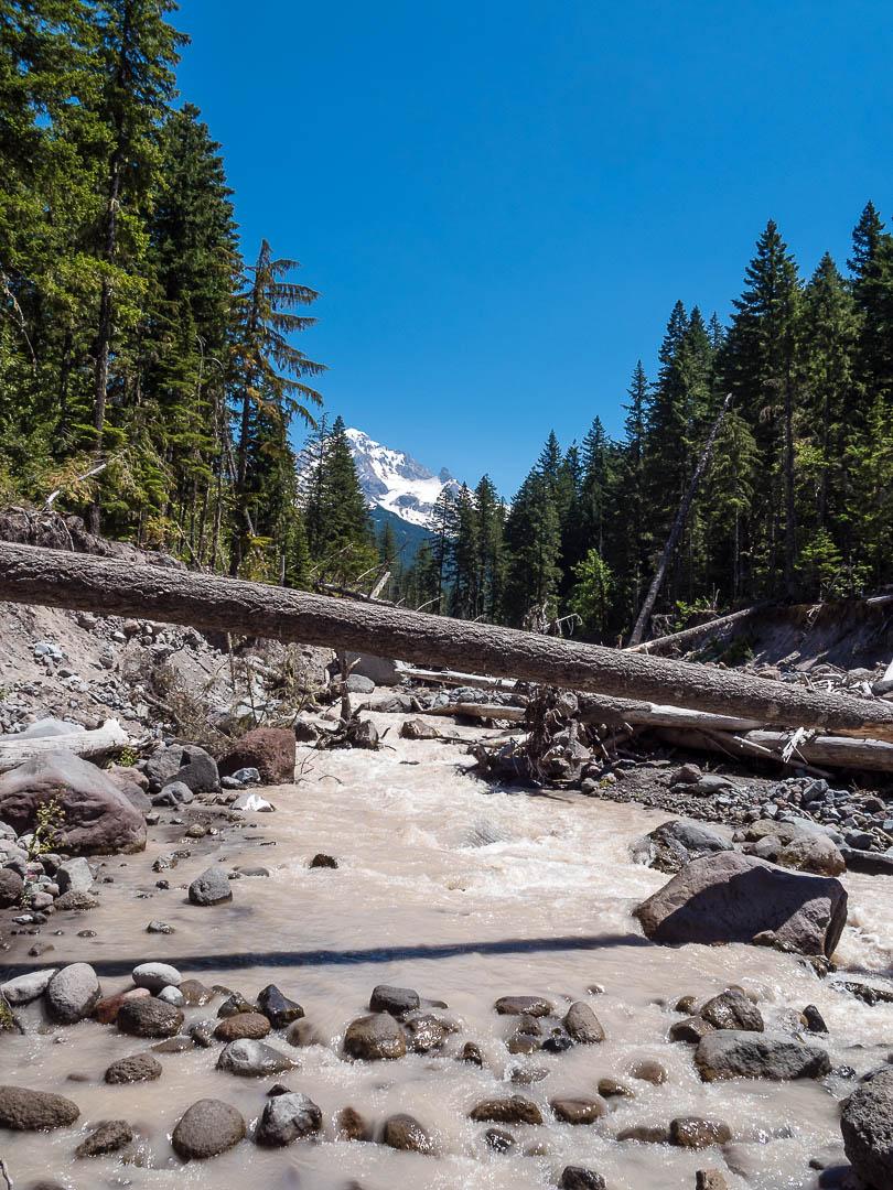 Ramona Falls Hike Mount Hood 12