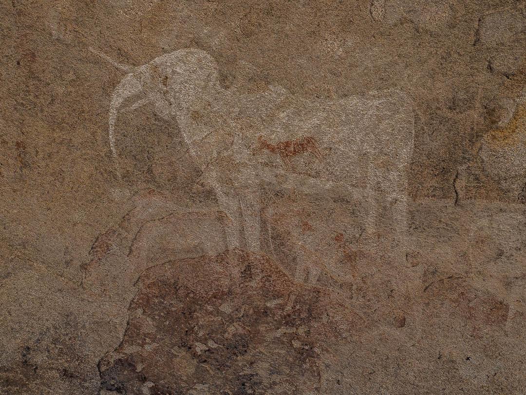 Bushmen's Painting