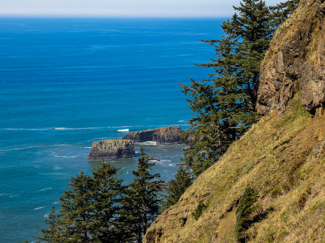 Cascade Head Trail 05