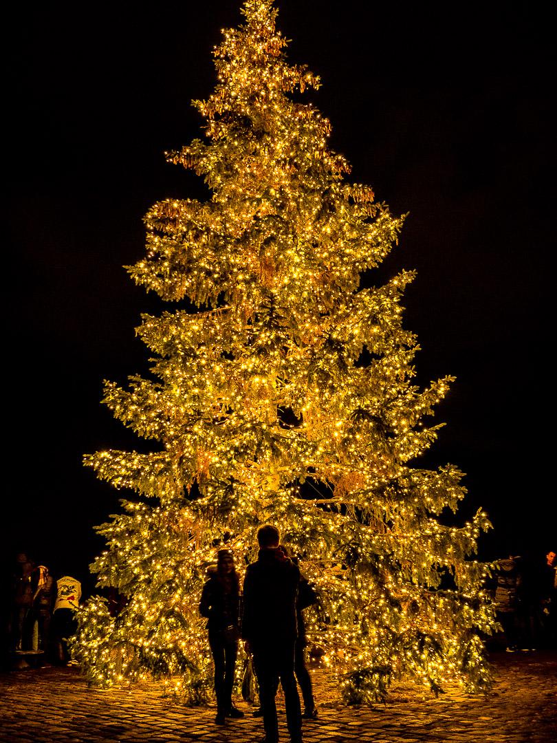 Imperial Christmas Tree |Nuremberg |2018