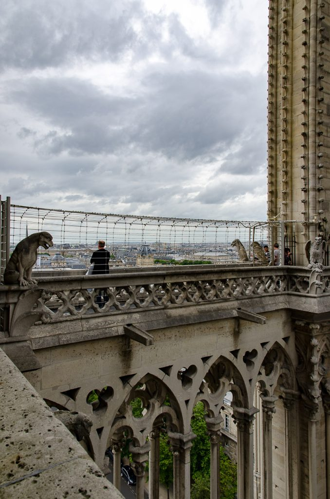 Views of Paris from the towers of Notre Dame de Paris