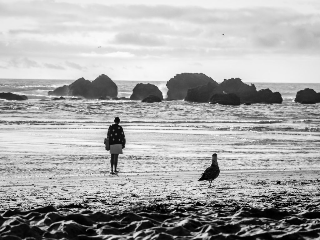 Woman and seagull looking into the ocean