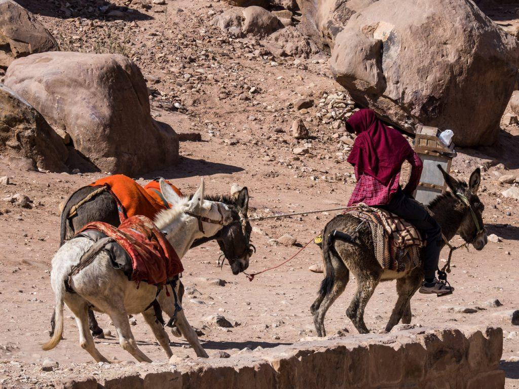 Resisting Donkeys